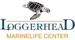 Loggerhead Marinelife Center of Juno Beach