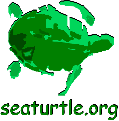 Sea Turtle Organization